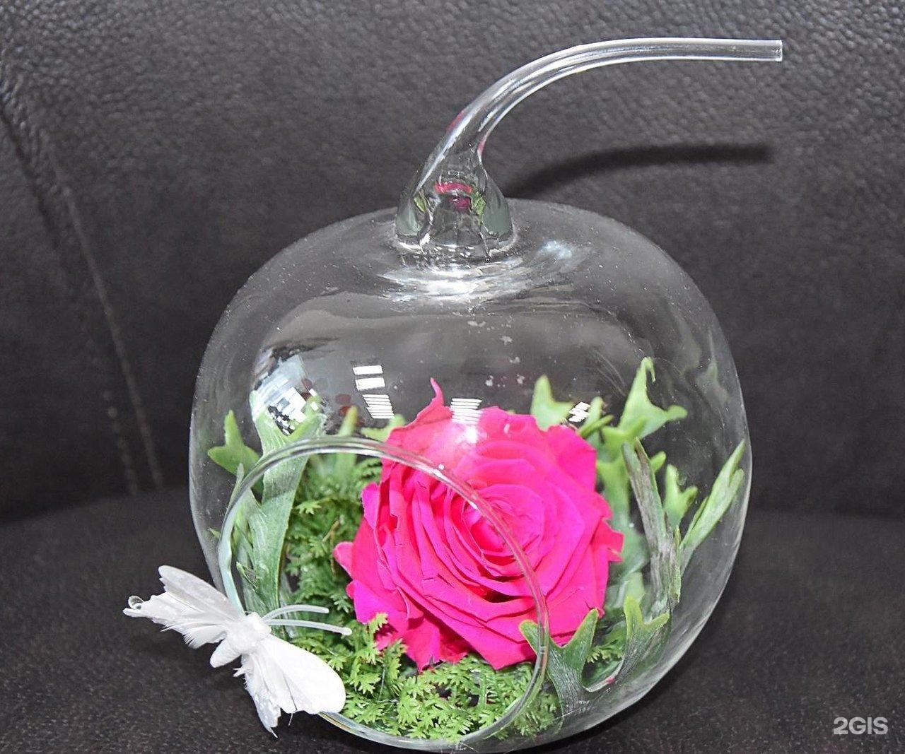 Как сохранить цветы в глицерине 19