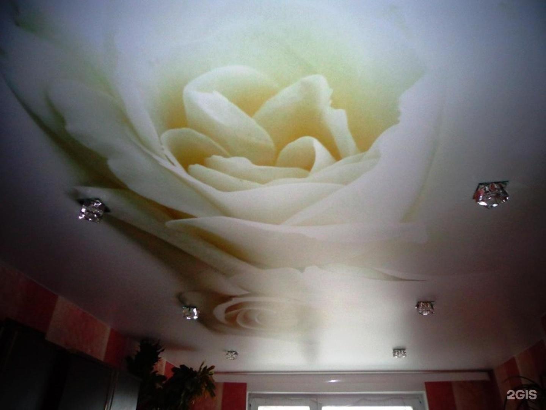 Цветы на натяжном потолке в спальне фото