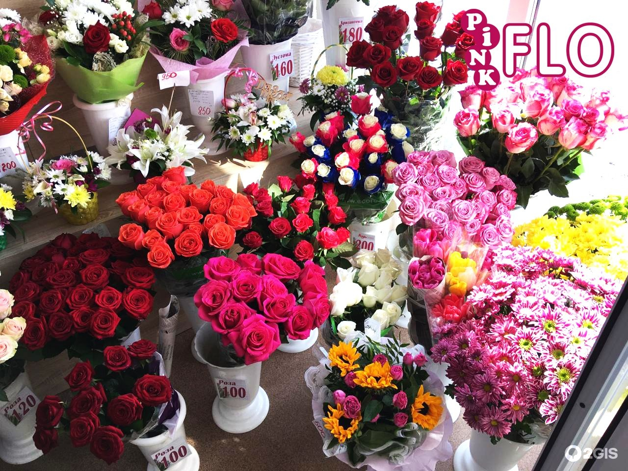 Интернет магазин, покупка цветы оптом днепропетровск купить
