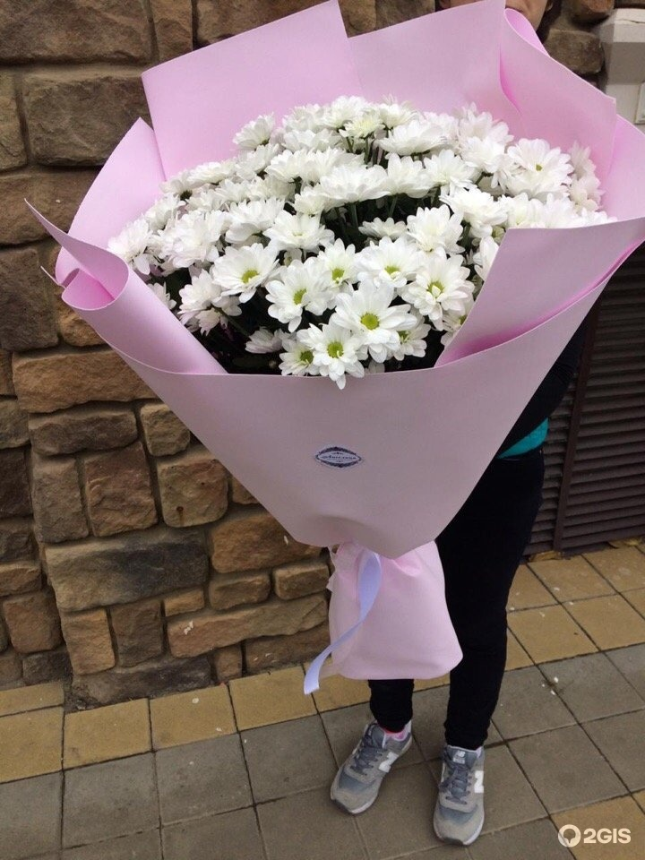 Магазин цветов в армавире