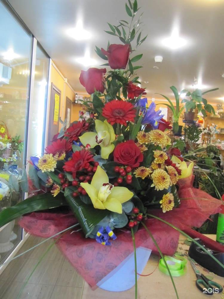 Цветы тюмень оптовый склад, аралии купить