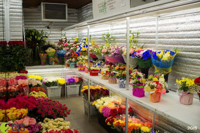 Цветы оптовая в москва база, цветов