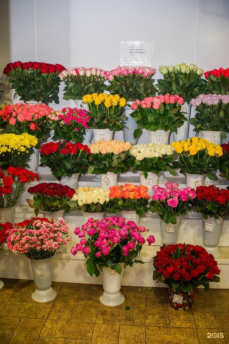 Оптовые базы цветов в ярославле, роз своими руками