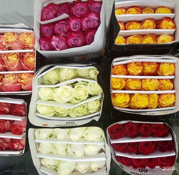 Доставка цветов оптом набережные челны круглосуточная, цветы заказать
