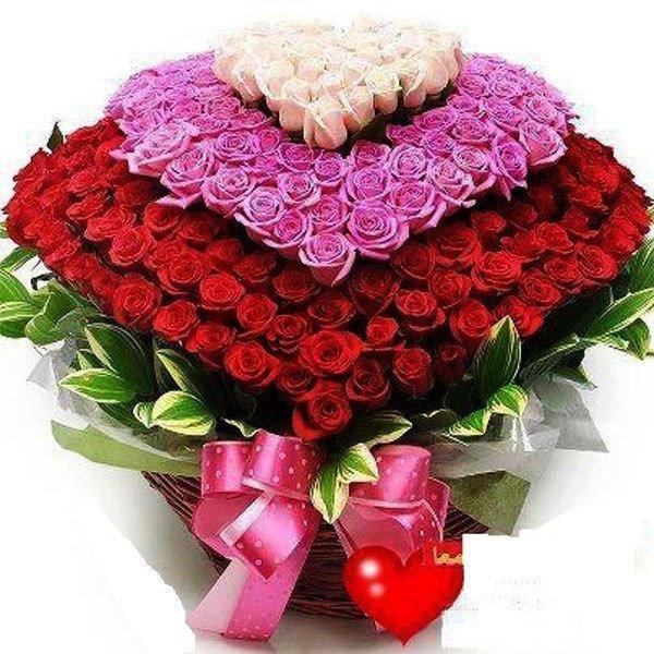 Цветы и пожелания картинки красивые, поздравлением годик