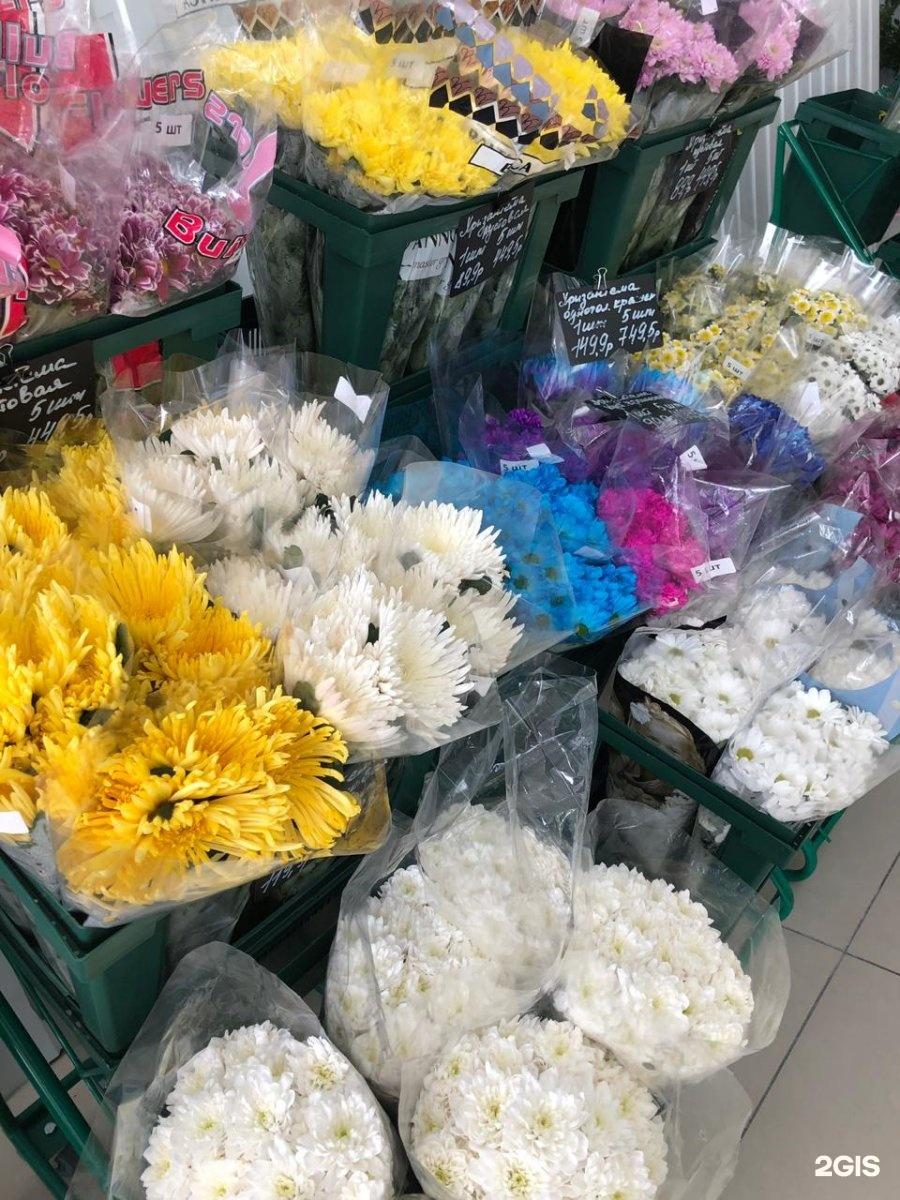 Солнышко, оптовые базы цветов в румынию