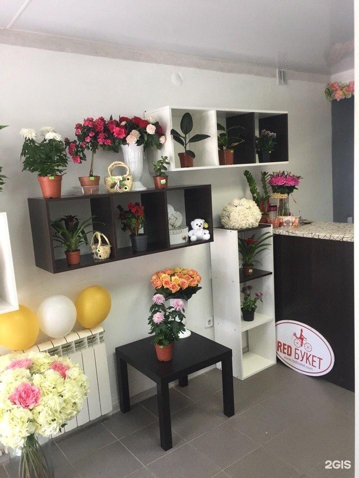 Магазин дружба цветы, купить цветы